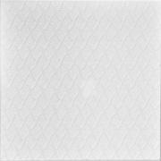 """Styrofoam Ceiling Tile - 20""""x20"""" - #R214"""