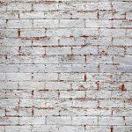 Brick Wall Peeling