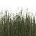 Dune Grass Panels
