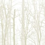 Winter Trees Cream